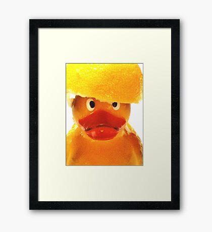 Felix  - Lemon Head Two Framed Print