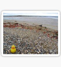 Duckscovering Rickett's Point Sticker