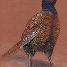pheasant by mindgoop