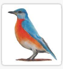 Bird's the Word Sticker