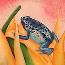 Stipple Frog by kruzadar
