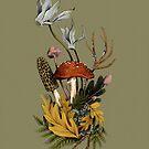 Herbstliche Pilz Woodland Szene von lascarlatte
