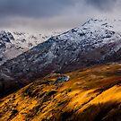 Golden Hillside by Andy Bennette