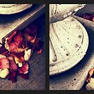 Remnants of Roses Diptych by Jessica Jenney