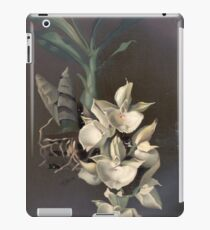 Reichenbachia Orchids illustrated and described by F. Sander 1888 V1-V2 090 iPad Case/Skin