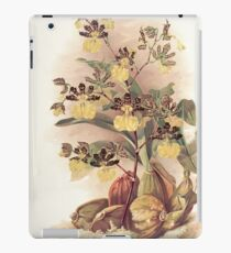 Reichenbachia Orchids illustrated and described by F. Sander 1888 V1-V2 088 iPad Case/Skin