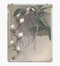 Reichenbachia Orchids illustrated and described by F. Sander 1888 V1-V2 067 iPad Case/Skin