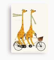 giraffes lets tandem Canvas Print