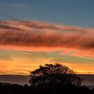 Early Morning Sky, County Kilkenny, Ireland by Andrew Jones