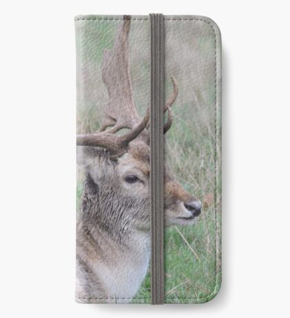 The Resting Prince iPhone Wallet