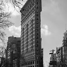 FLATIRON BUILDING by Michael Carter