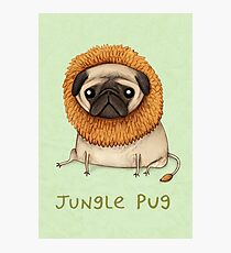 Jungle Pug Photographic Print