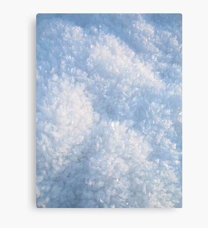 Snow crystals Canvas Print