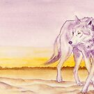 Journey: The Wolf OR7 by HAJRA MEEKS