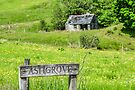 Cabin in the Scottish countryside, County Argyll by Beth A.  Richardson