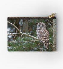 Barred Owl - Ontario Canada Studio Pouch