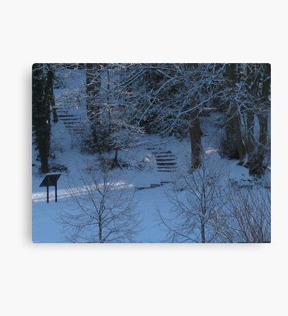 Cutting through the snow Canvas Print