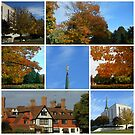 Autumn Scenes at The London Temple Collage by MidnightMelody