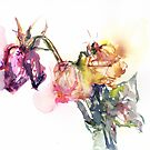 Watercolour painting of roses Day 453. by akolamble