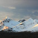 Snow covered Cuillin by beavo