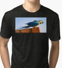 Macaw Extended Tri-blend T-Shirt