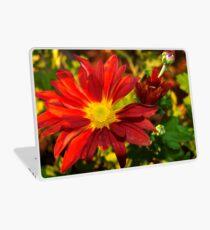 Red daisy chrysanthemum Laptop Skin