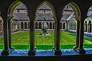 The Cloisters, Iona Abbey, Scotland by Beth A.  Richardson