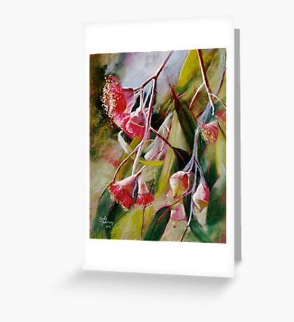 'Silver Princess Eucalypt'  Greeting Card