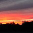 Beautiful Sunsets by gypsykatz