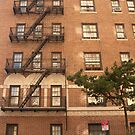 Building & Fire Escape - New York City by Olivia Son