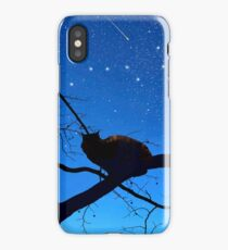 Ursa Major * The Big Dipper iPhone Case/Skin