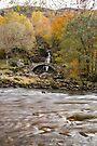 Roman Bridge, Glen Lyon, Scotland by Cliff Williams