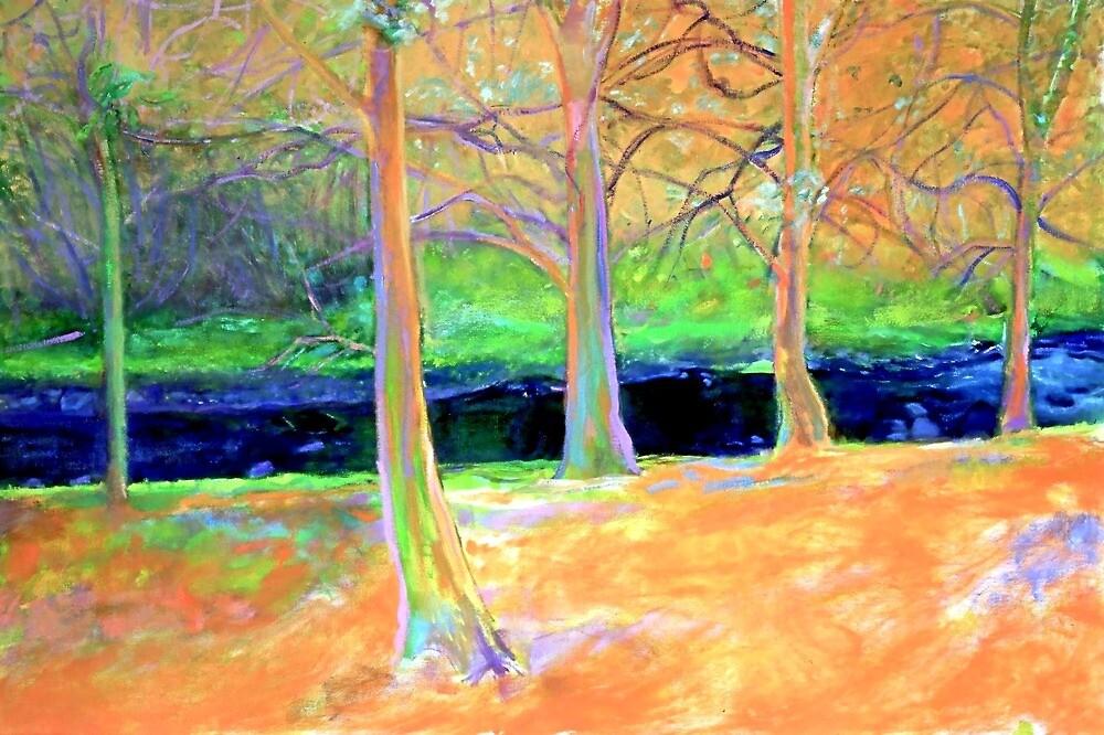 Orange Crush: Merri Creek, Melbourne by Sue Wellington