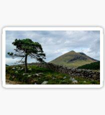 A Tree, On The Rocks Sticker