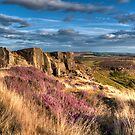 """Heather View, Curbar Edge"" by Bradley Shawn  Rabon"