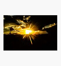 sunset with palm tree... Photographic Print