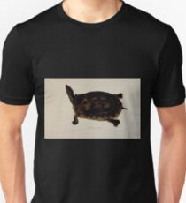 Tortoises terrapins and turtles drawn from life by James de Carle Sowerby and Edward Lear 029 T-Shirt