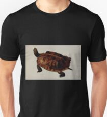 Tortoises terrapins and turtles drawn from life by James de Carle Sowerby and Edward Lear 026 T-Shirt