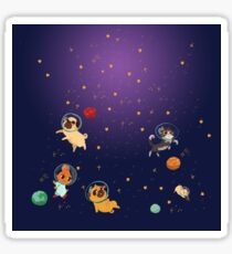 Space pets Sticker