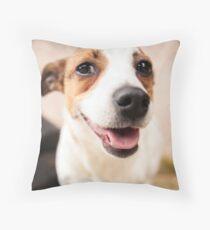 Jack Russel 1 Throw Pillow