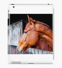 Equine 4 iPad Case/Skin