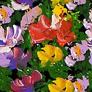 colorful flowers by Lusy Rozumna