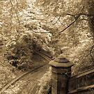 Warriston Foliage Edinburgh Scotland by humblebeeabroad