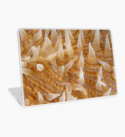 Fungiid Macro Laptop Skin