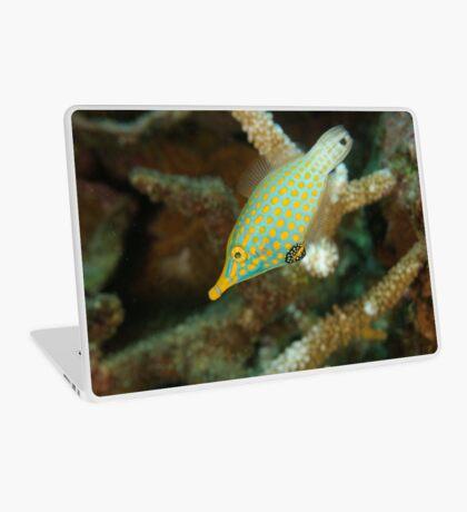 Orange-Spotted Filefish - Oxymonacanthus longirostris Laptop Skin