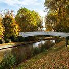 Coronation Bridge Victoria Park Stafford 2 by Ann Garrett