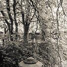 Secret Garden Warriston Cemetery by humblebeeabroad