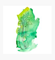 Celery watercolor drawing Photographic Print