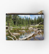 Forest Lake - Two Studio Pouch