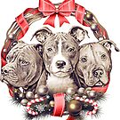 It's a Pit Bull Christmas by Beverly Lussier